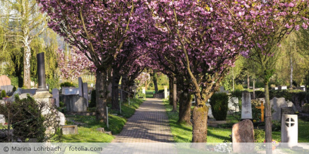 Friedhof_fotolia_64314357