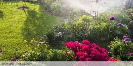 Die Bewässerung des Gartens Facebook