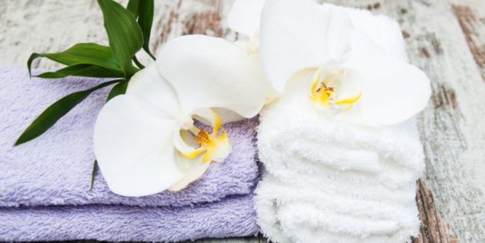 spa concept  with  orchids