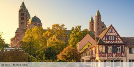"""""""Künstliche Intelligenz und die Zukunft des Datenschutzrechts"""", 8. Speyerer Forum"""