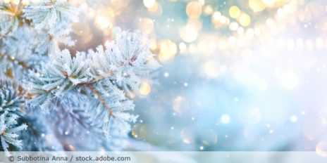 Winter_Christmas_Weihnachten_Baum_Frost_AdobeStock_295662882