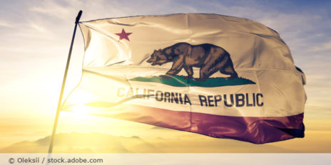 Flagge_California_Kalifornien_AdobeStock_254517288